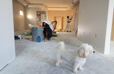 Rénover son salon du sol au plafond