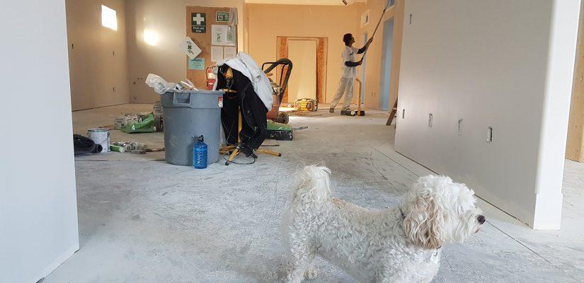 Homme en train de rénover son salon